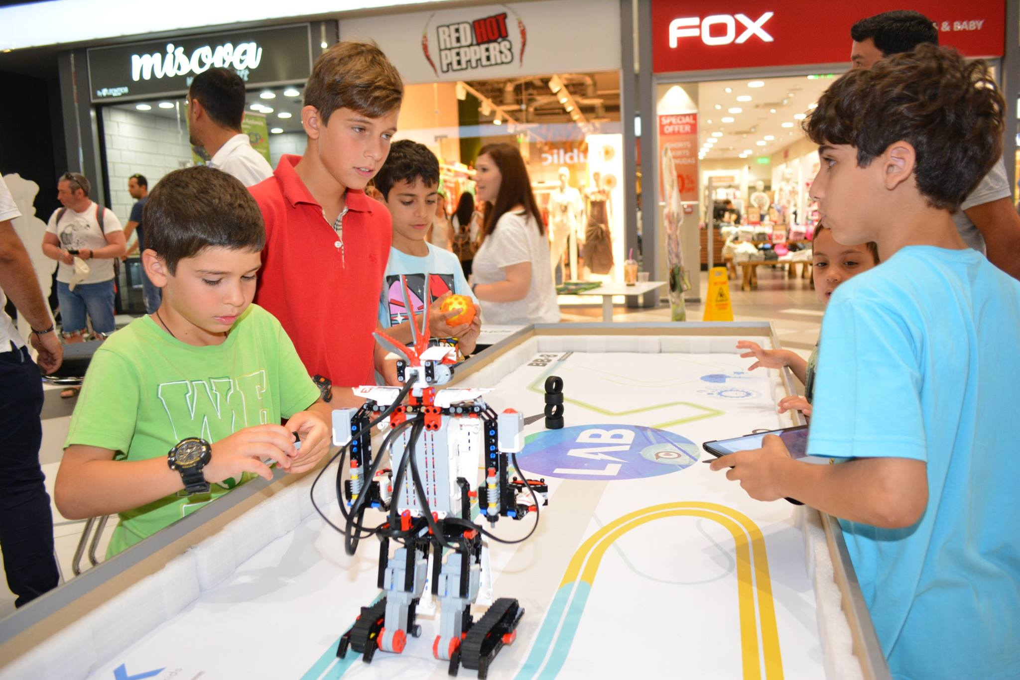 robotic development in 21st century essay Preparing for the 21st century technology and the nation's future private firms have the primary responsibility for the development and adoption of technology in.